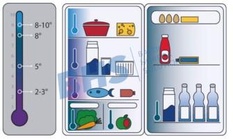 Sätted toidu külmkapis hoidmise kohta